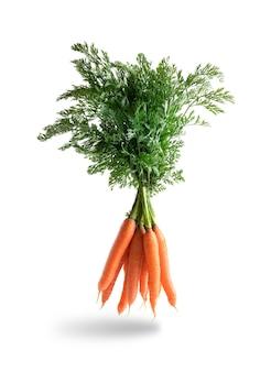 Pęczek świeżej marchewki, lewitujący odizolowany od bieli