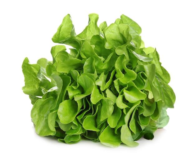 Pęczek świeżej zielonej sałaty na białym tle