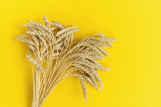 Pęczek wynika z kłosów pszenicy na żółto