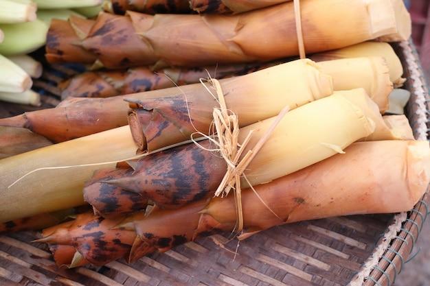 Pęd bambusa na ulicy