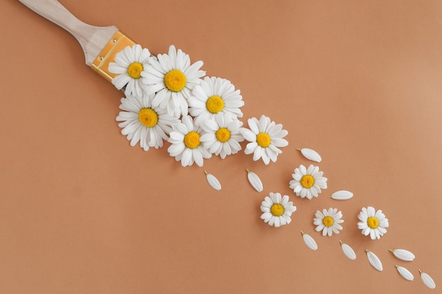Pędzel kwiat rumianku na beżowym tle - koncepcja nietoksycznej farby.