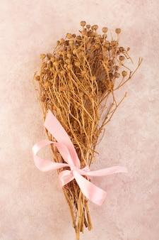 Peganum harmala roślina suszona z różową kokardką na różowym stole roślina kolorowa