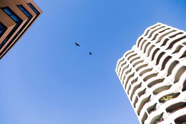 Pejzaż miejski z budynkiem