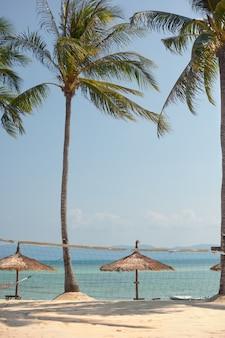 Pejzaż morski. wybrzeże z parasolami plażowymi
