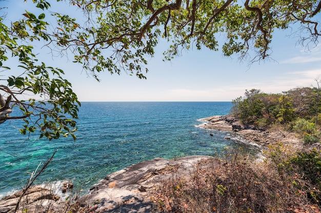 Pejzaż morski z drzewem na wzgórzu i linii brzegowej na wyspie lipe