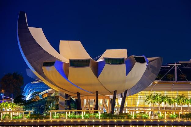 Pejzaż singapuru w nocy w singapurze.