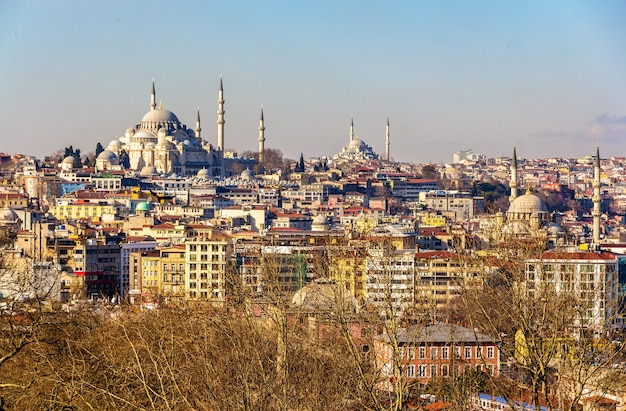 Pejzaż w stambule z pałacu topkapi w turcji