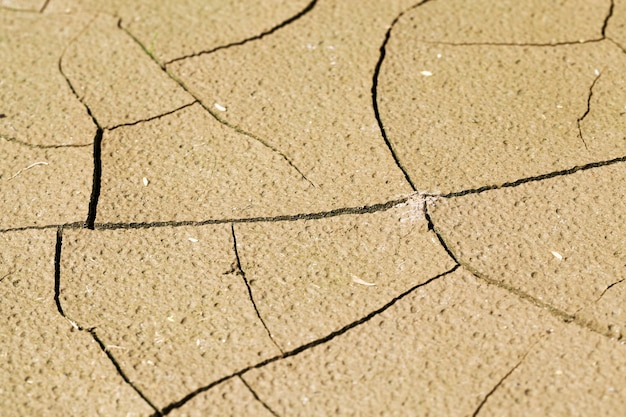 Pęknięta gleba podczas suszy na polu uprawnym, słaba gleba nieurodzajna, zbliżenie, mała głębia ostrości