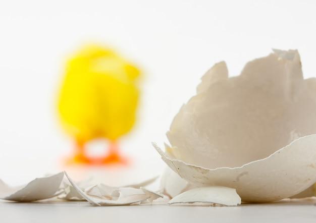 Pęknięta skorupa jajka i odchodzący kurczak