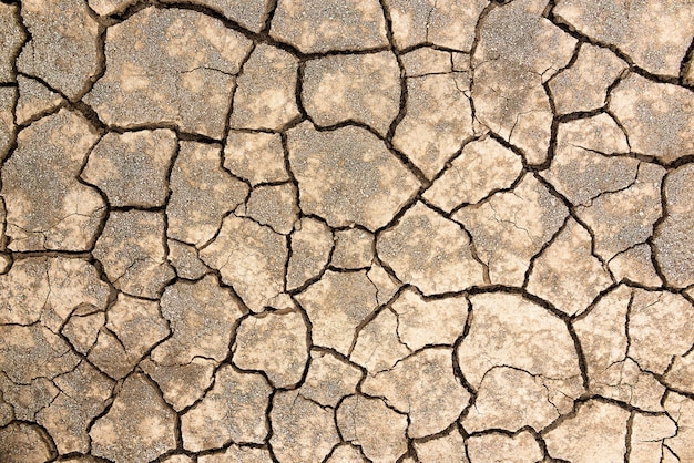 Pęknięta tekstura gleby