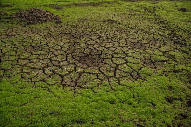 Pęknięta ziemia naziemna. zbliżenie pęknięć na ziemi spowodowanych suszą zbiornika.
