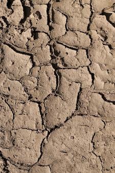 Pęknięty w porze suchej warstwa żyznej gleby na polu, zbliżenie na górę