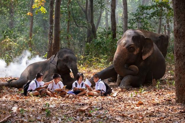 Pełna długość uczniów stojących przy słoniu w lesie