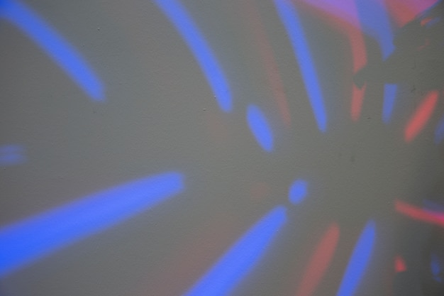 Pełna klatka liścia monstera z niebieskim światłem