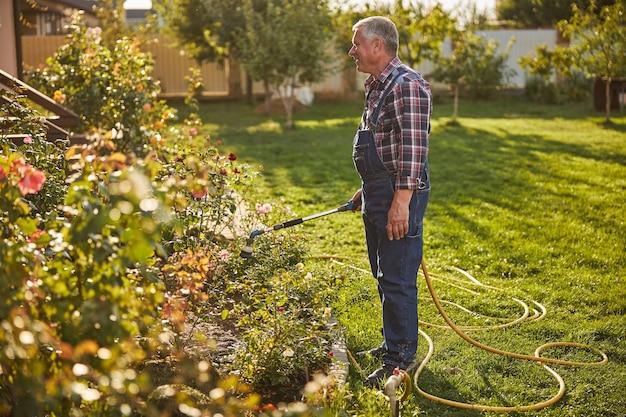 Pełne zdjęcie radosnego starzejącego się mężczyzny trzymającego wąż z wodą i podlewającego rośliny w ogrodzie