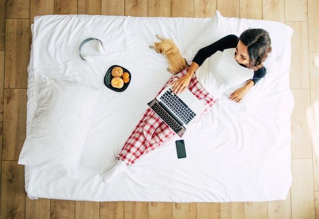 Pełnometrażowe zdjęcie z góry przedstawiające młodą brunetkę w zwykłym ubraniu podczas pracy z laptopem w łóżku. szczęśliwa dziewczyna studiuje z psem w domu