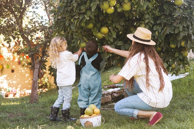Pełny strzał kobiety i dzieci zbierających owoce