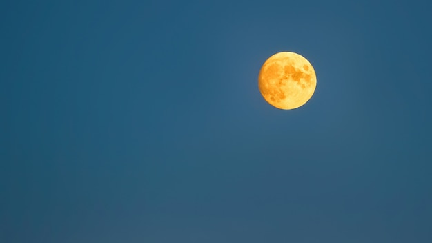 Pełny żółty księżyc na niebieskim sk