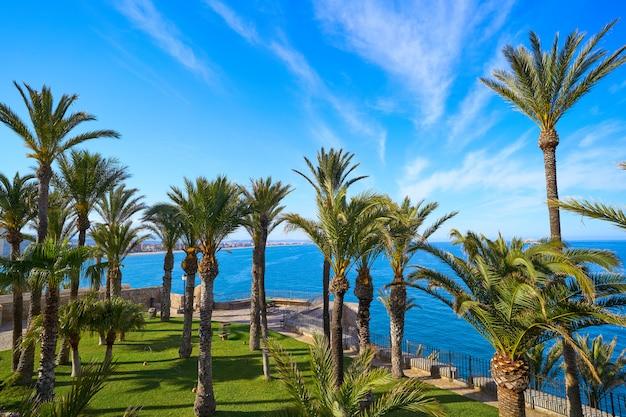 Peniscola śródziemnomorski ogród w hiszpania