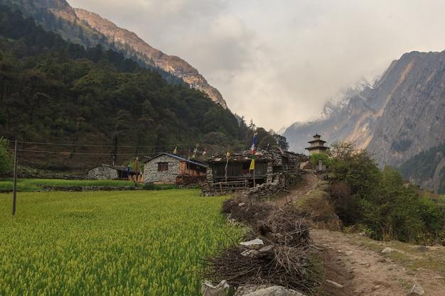 Pensjonat i stupa buddyjska w małej nepalskiej wiosce