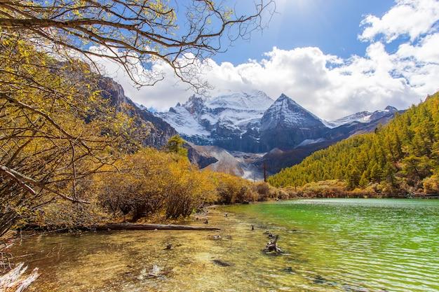 Perełkowy jezioro lub zhuoma losu angeles jezioro i śnieżna góra w jesieni w yading rezerwacie przyrody, sichuan, chiny.