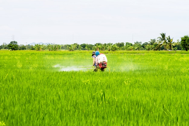 Pestycydy rolników na polach