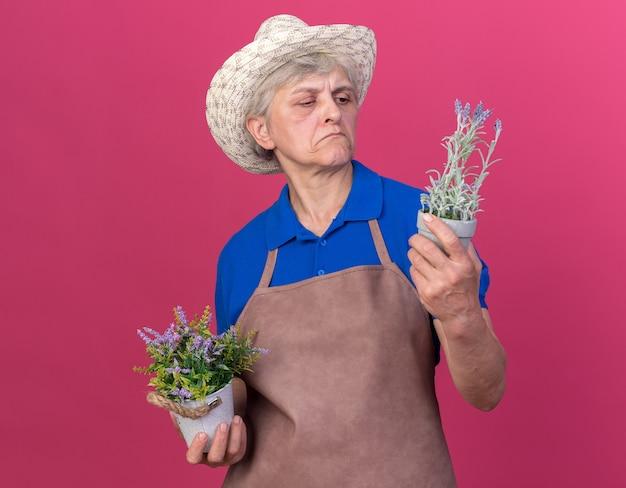 Pewna siebie starsza kobieta ogrodniczka w kapeluszu ogrodniczym trzyma i patrzy na doniczki izolowane na różowej ścianie z miejscem na kopię