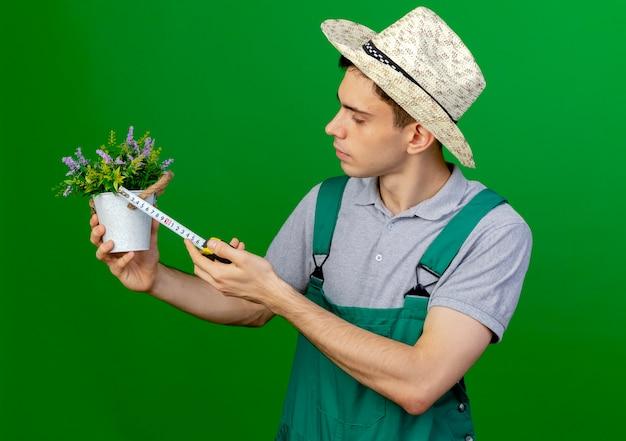 Pewnie młody mężczyzna ogrodnik w kapeluszu ogrodniczym wygląda i mierzy doniczkę z centymetrem na białym tle na zielonym tle z miejsca na kopię