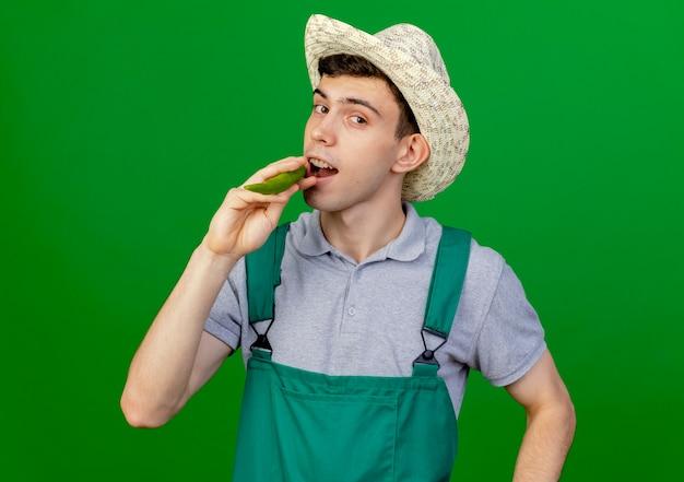 Pewny siebie młody ogrodnik w kapeluszu ogrodniczym udaje, że gryzie ostrą paprykę