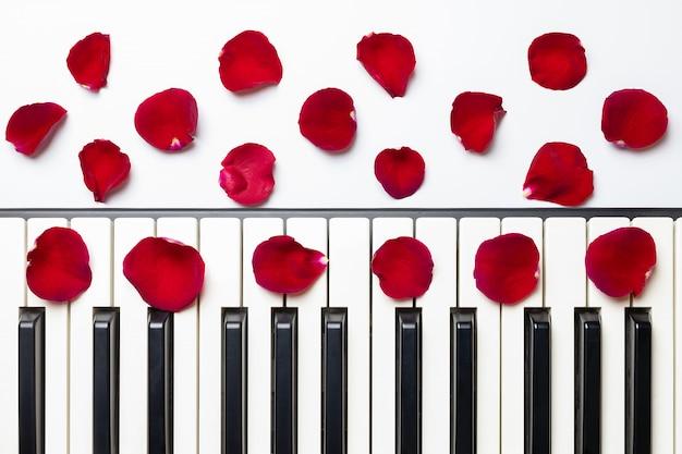 Pianino klucze z czerwieni róży kwiatu płatkami, odosobniony, odgórny widok, kopii przestrzeń.