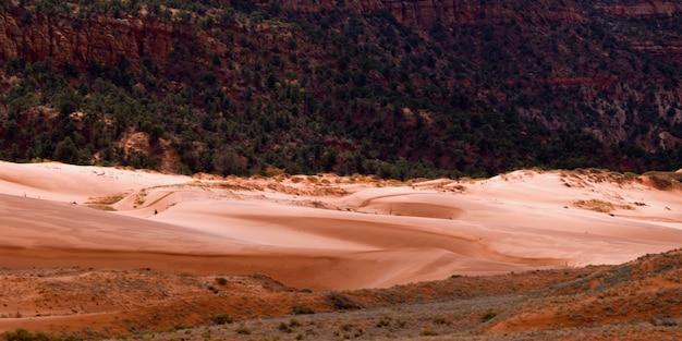 Piasek diuny w pustyni, koral menchii piaska diun stanu park, utah, usa