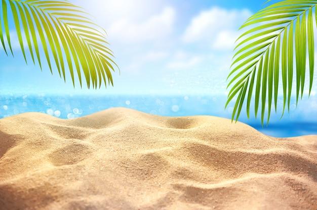 Piasek na plaży i liście palmowe