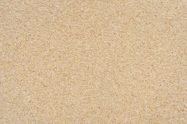 Piasek tekstura na plaży. kruszone muszle