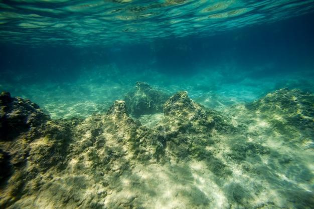 Piasek w tle na podwodnej plaży