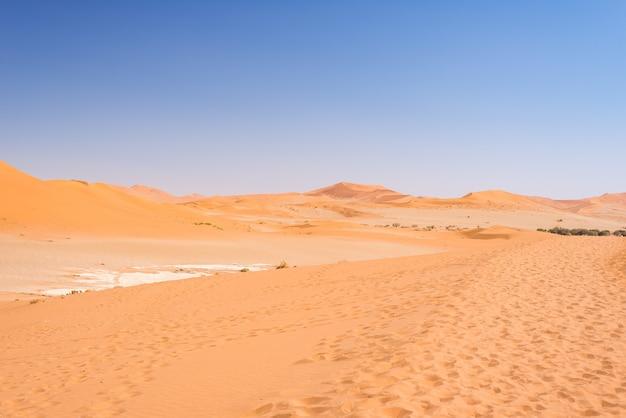 Piasek wydmy namib pustynia w cudownym namib naukluft parku narodowym, namibia, afryka.