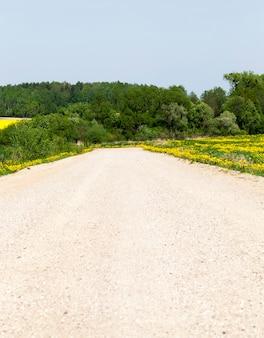 Piaszczysta droga latem, latem lub wiosną