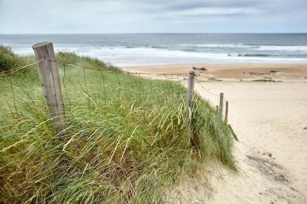 Piaszczysta plaża francuskiego silver coast