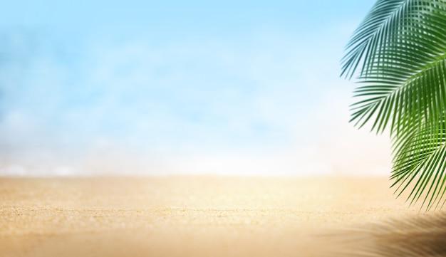 Piaszczysta plaża piękna z liści palmowych, lato na koncepcji plaży, puste tło