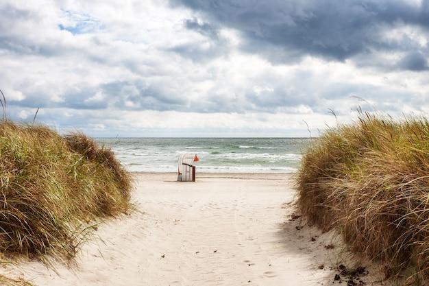 Piaszczysta plaża z leżakami i trawą wydmową. późne lato krajobraz z zachmurzonym niebem. tło wakacje. wybrzeże bałtyku, cel podróży