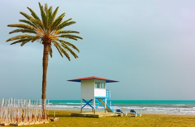 Piaszczysta plaża z palmą i wieżą ratowniczą w larnace na cyprze