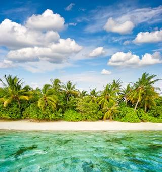 Piaszczysta plaża z palmami i pochmurne niebo niebieskie. tropikalna wyspa
