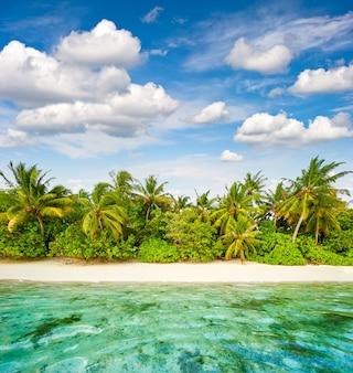 Piaszczysta plaża z palmami i zachmurzonym niebieskim niebem. tropikalny krajobraz wyspy