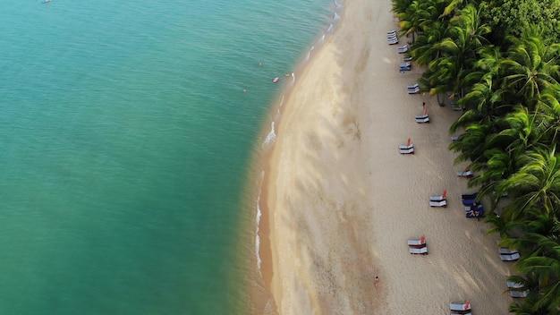 Piaszczysta plaża z palmami. widok z lotu ptaka na leżaki na piaszczystej plaży z palmami kokosowymi