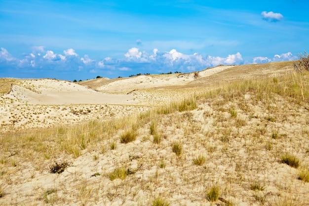 Piaszczyste wydmy i sucha trawa