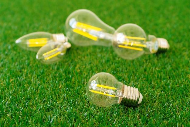 Pięć żarówek na trawie z bliska
