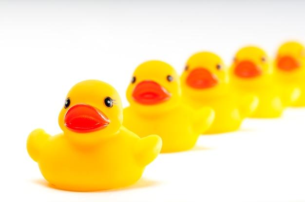 Pięć żółtych zabawkarskich kaczek z rzędu na bielu