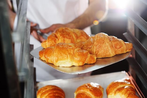 Piekarz trzyma tacę ze świeżo upieczonymi rogalikami francuskimi