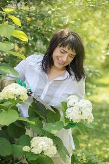 Piękna 40-letnia kobieta z uśmiechem zajmuje się kwitnącymi białymi krzewami hortensji w ogrodzie. dłonie w rękawiczkach odcinają gałąź kwiatów. ogrodnik. lato