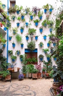Piękna andaluzyjska fasada patio ozdobiona zwisającymi ze ściany roślinami w niebieskich doniczkach. cordoba, andaluzja, hiszpania.