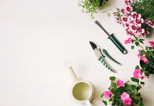 Piękna aranżacja narzędzi ogrodniczych